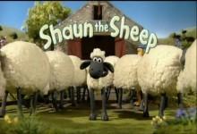Ovecka Shaun: Krtince