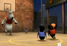 Medved Bernard: Basketbal