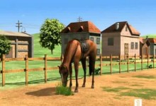 Medved Bernard: Jazda na koni