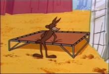 Kojot a Road Runner: Balvan na lane
