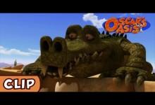 Oskarova oaza: Krokodil