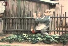Jajo a Pajo: Ako pestovali uhorky