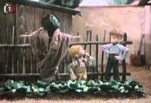 Jajo a Pajo: Ako pestovali jahody