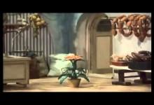Jajo a Pajo: Ako pestovali kaktus