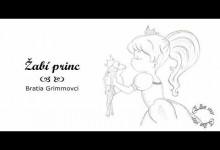 Zabi princ (audiorozpravka)