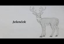 Jelencek (audiorozpravka)