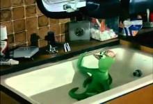 Chobotnice z druheho poschodia (1986)