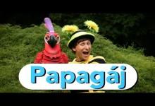 Smejko a Tanculienka: Papagaj