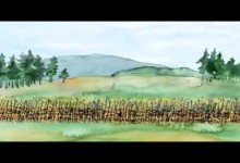 Dejiny ceskeho naroda: Sedliaci