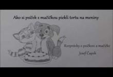 Ako si psicek s macickou piekli tortu na meniny (audio rozpravka)