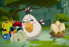 Angry Birds: Mimo sluzbu