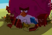Angry Birds: Zahradnicenie s Terencom