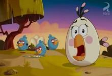 Angry Birds: Dvojita cena